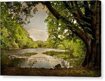 Beauty Of Ireland Canvas Print by Cheryl Davis
