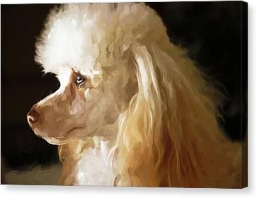 Bella Canvas Print by Mickey Clausen