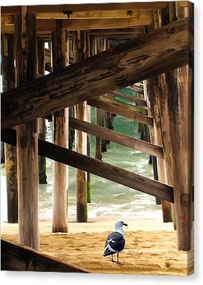 Beneath The Pier Canvas Print by Diane Wood