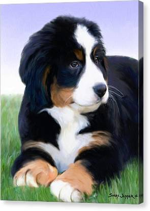 Bernese Mountain Pup Canvas Print by Snake Jagger