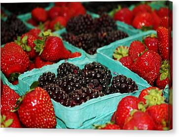 Berries Canvas Print by Cathie Tyler