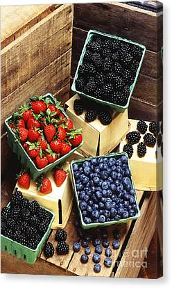 Berries Canvas Print by Photo Researchers