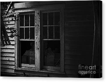 Better Days Canvas Print by Cris Hayes