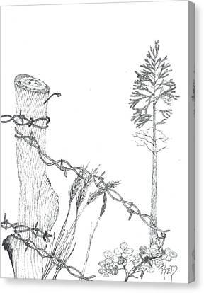 Beyond The Broken Fence - Sketch Canvas Print by Robert Meszaros