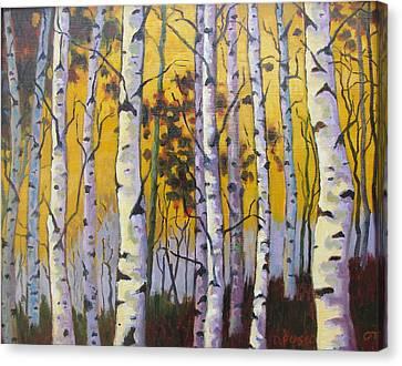 Birches Canvas Print by Dan Fusco