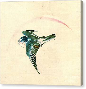 Bird Flying 1840 Canvas Print by Padre Art