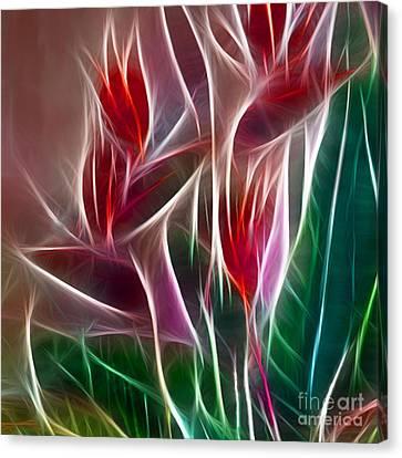 Bird Of Paradise Fractal Panel 2 Canvas Print by Peter Piatt