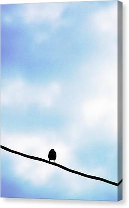 Bird  On A Wire Canvas Print by Ed Bricker