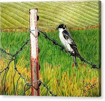 Bird On A Wire Canvas Print by Judy Garrett