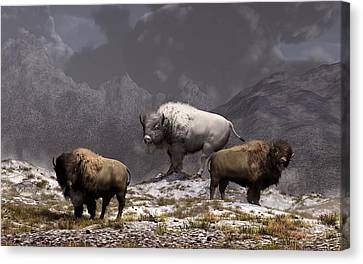 Bison King Canvas Print by Daniel Eskridge