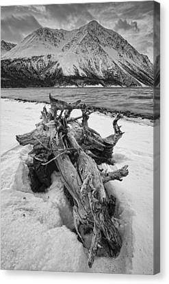 Black And White Version Of Kathleen Canvas Print by Robert Postma