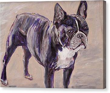 Black Frenchie Canvas Print by Arthur Rice