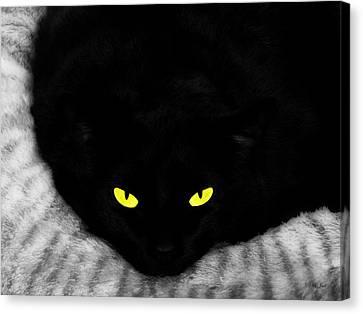 Black Panther Canvas Print by Ms Judi