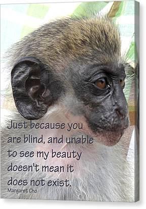 Blind Beauty Canvas Print by Ian  MacDonald
