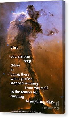 Bliss Canvas Print by Richard Donin