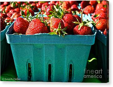 Blue Box Canvas Print by Susan Herber