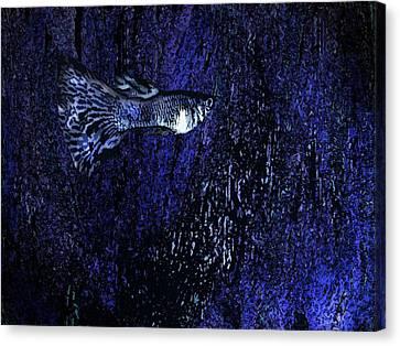 Blue Fish Art Canvas Print by Mario  Perez