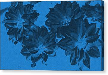 Blue Flower Art Canvas Print by Aimee L Maher Photography and Art Visit ALMGallerydotcom