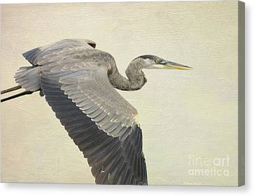 Blue Heron On Canvas Canvas Print by Deborah Benoit