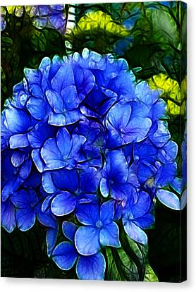 Blue Hydrangea Abstract Canvas Print by Cindy Wright