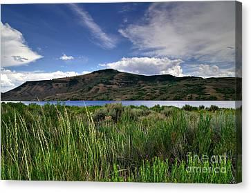 Blue Mesa Reservoir Canvas Print by Michael Kirsh