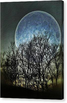 Blue Moon Canvas Print by Marianna Mills