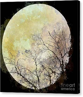 Blue Moon Rising Canvas Print by Arne Hansen