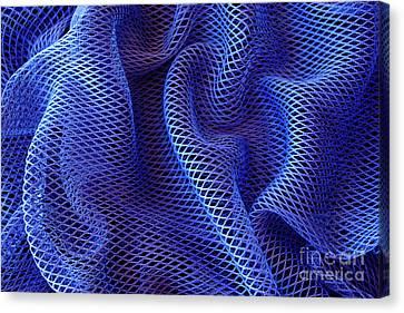 Blue Net Background Canvas Print by Carlos Caetano