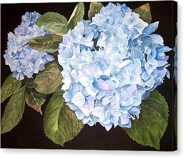 Blue On Blue Canvas Print by Karen Casciani