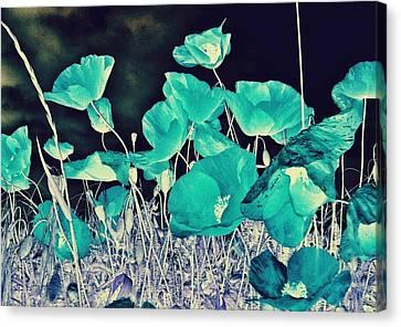 Blue Vision Canvas Print by Marianna Mills