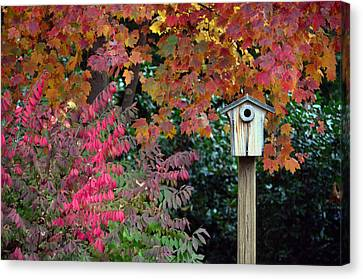 Bluebird House Color Surround Canvas Print by Sandi OReilly