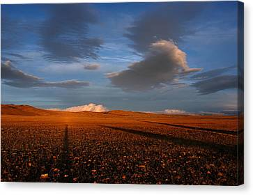 Bolviano Sunset In The High Plateau. Canvas Print by Eric Bauer