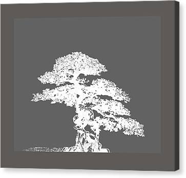 Bonsai I Canvas Print by Ann Powell