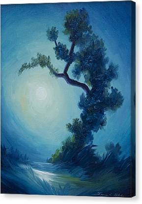 Bonsai I Canvas Print by James Christopher Hill