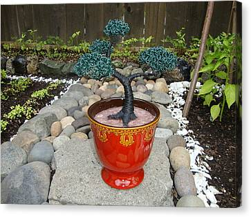 Bonsai Tree Medium Red Glass Vase Planter Canvas Print by Scott Faucett