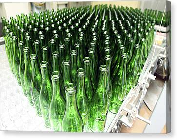 Bottles At A Wine Bottling Factory Canvas Print by Ria Novosti