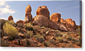 Boulder Landscape Canvas Print by Marty Koch