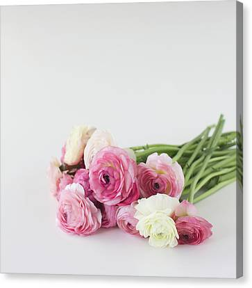 Bouquet Of Ranunculus Canvas Print by Elin Enger