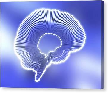 Brain Outline, Artwork Canvas Print by Pasieka