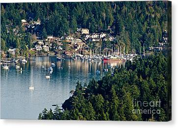 Brentwood Bay Vancouver Island Bc Canada Canvas Print by Andy Smy