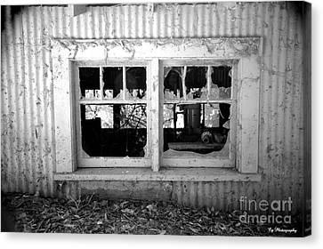 Broken Windows Canvas Print by Cheryl Young