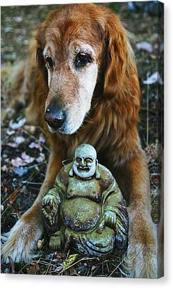 Buddha And The Old Boy Canvas Print by Lorraine Devon Wilke