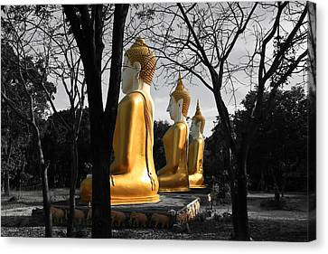 Buddha In The Jungle Canvas Print by Adrian Evans