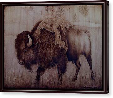 Bull Attitude Canvas Print by Jo Schwartz