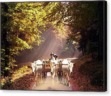 Bulls Ride Canvas Print by E  Kraizberg