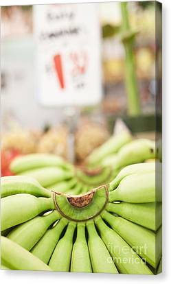 Bunches Green Bananas In A Market Canvas Print by Jetta Productions, Inc