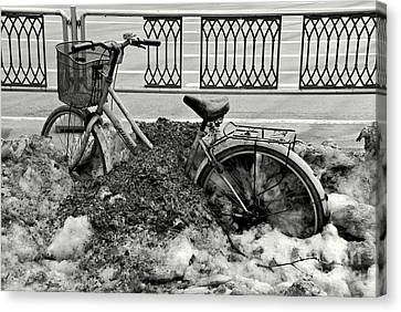 Buried In The Snow Canvas Print by Dean Harte