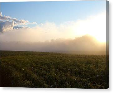Burning Fog Canvas Print by Tim Fitzwater