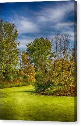 Busch Wildlife Swampy Autumn Canvas Print by Bill Tiepelman