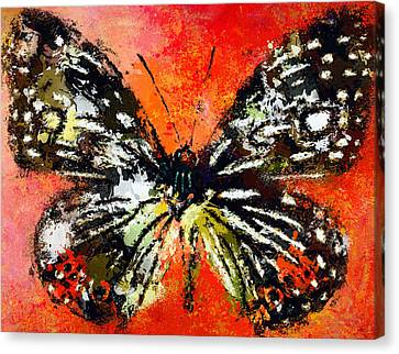 Butterfly 3 Canvas Print by Yury Malkov